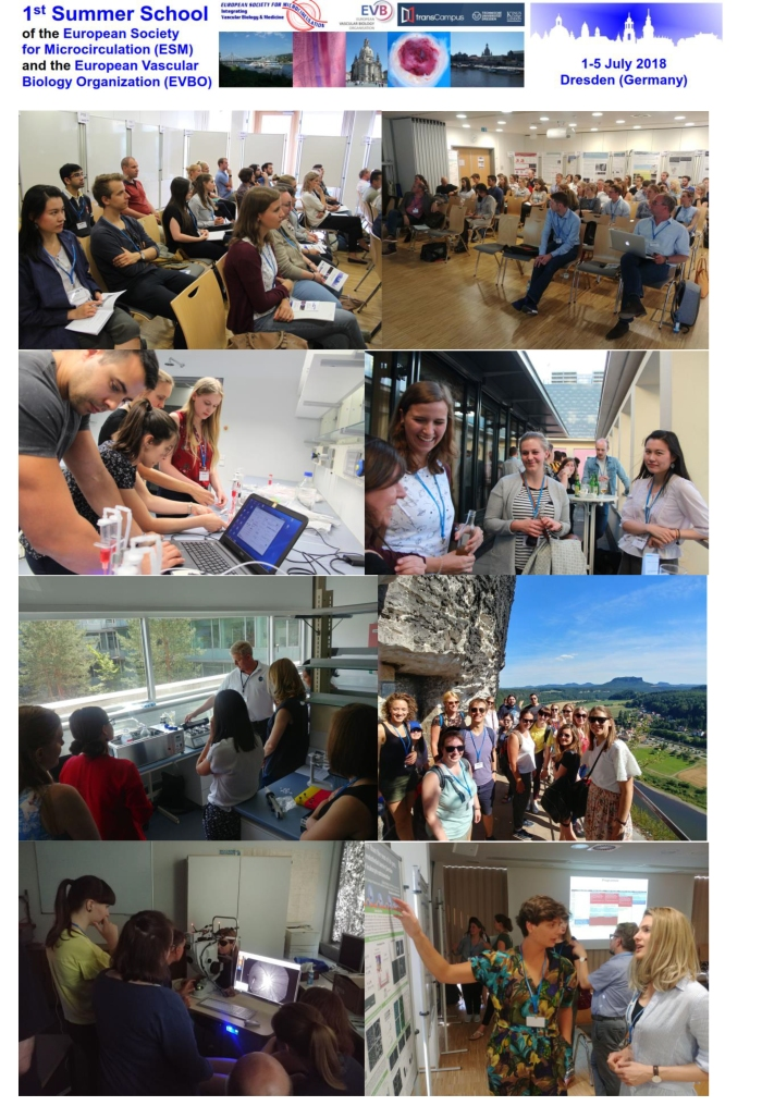 Short report 1st ESM_EVBO Summer School 07-2018 Website+-2
