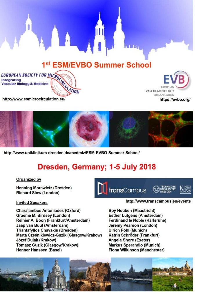 Short report 1st ESM_EVBO Summer School 07-2018 Website+-4