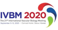IVBM 2020